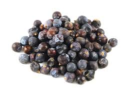 juniper berries spirits